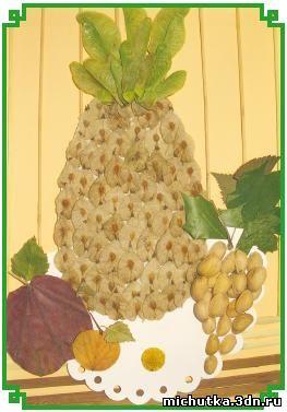Аппликации из семян и косточек.